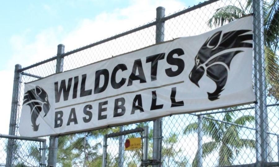Fall baseball team shows potential, prepares for Spring season