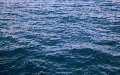 Ocean Vida makes waves