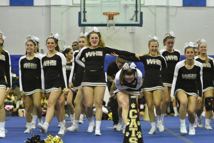 Competitive cheerleaders soar into state competition, fall into fourth
